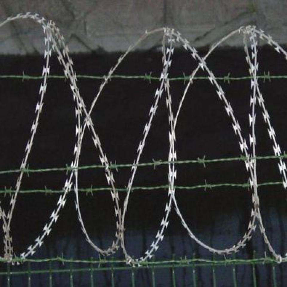 Бесшовные украшения из колючей проволоки на выполнение проектных наклейка, бесшовные украшения из колючей проволоки